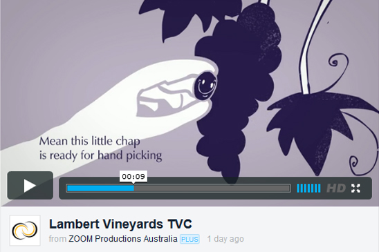 Lambert Vineyards, animation, animate, TVC, commercial, advertising, design, creative agency, Sydney, Zoom Productions, vimeo